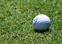 Best Amateur Golf Ball: 4 Good Golf Balls for Beginners
