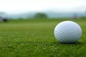 Golf Ball Retrievers to Buy