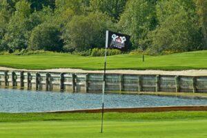 Best Golf Ball Picker Uppers
